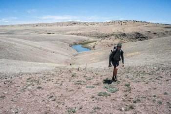 CDT-New-Mexico-Post-Gila-Climb-Moist