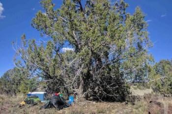 CDT-New-Mexico-Trail-Magic-Grants