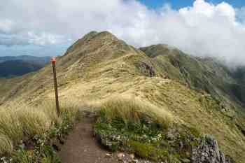 New-Zealand-Tararua-Range-Traverse-Alpha-to-Kime-Hut