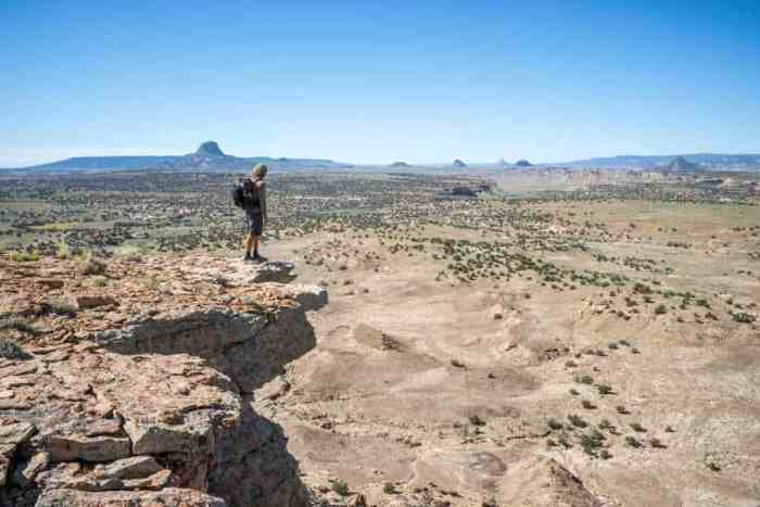 CDT-New-Mexico-Appa-Viewpoint