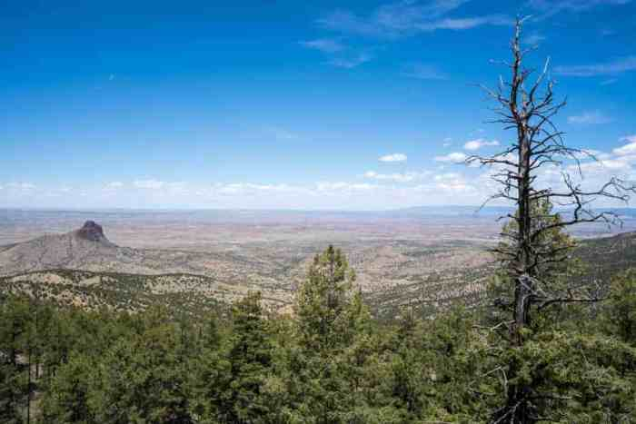 CDT-New-Mexico-Desert-Viewpoint