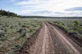 CDT-New-Mexico-Dirt-Road-Trail-Again