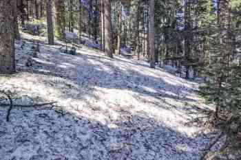 CDT-New-Mexico-Mount-Taylor-Trail-Snow