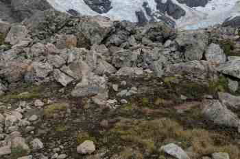 New-Zealand-Ball-Pass-Route-Ridge-Campsite
