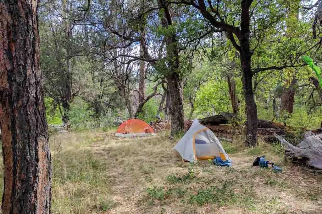 CDT-New-Mexico-Gila-Campsite