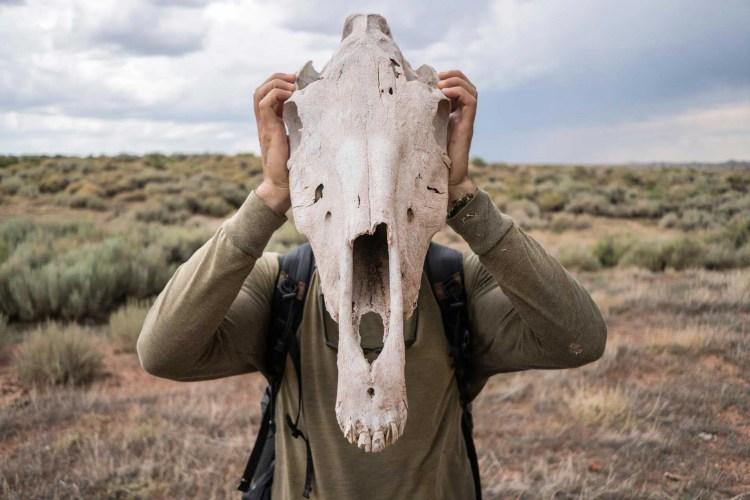 CDT Wyoming Basin Skull