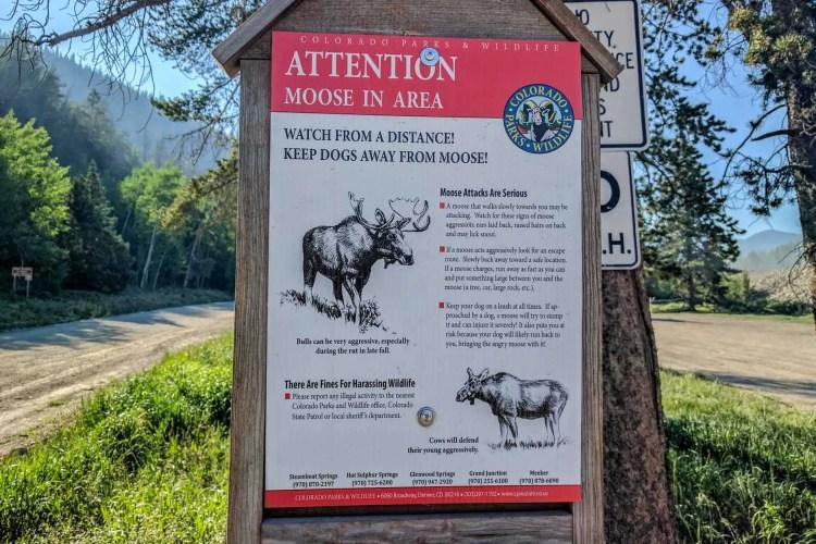 CDT Colorado Moose Sign