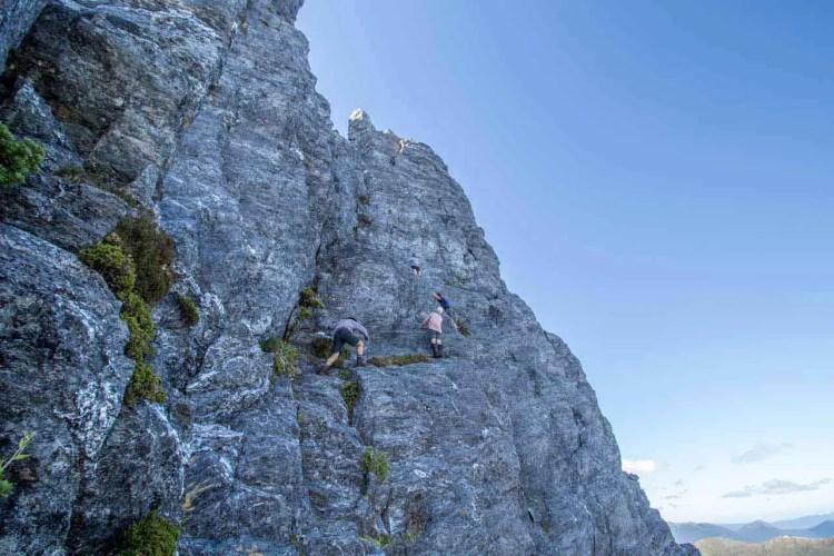 Tasmania Federation Peak Track Climb