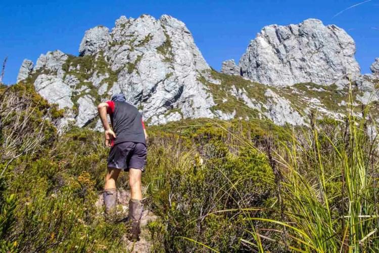 Tasmania Federation Peak Track Plateau