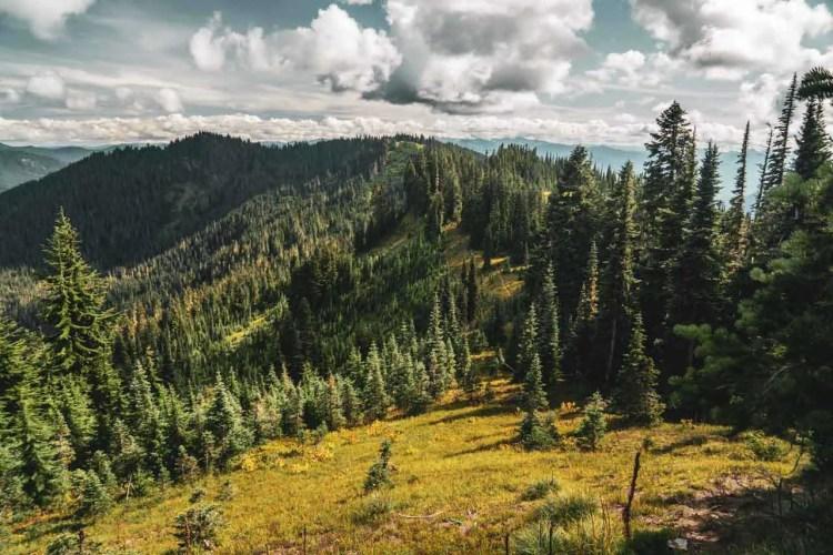Washington Wonderland Trail Green