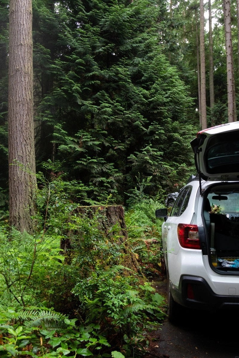 car camping in washington