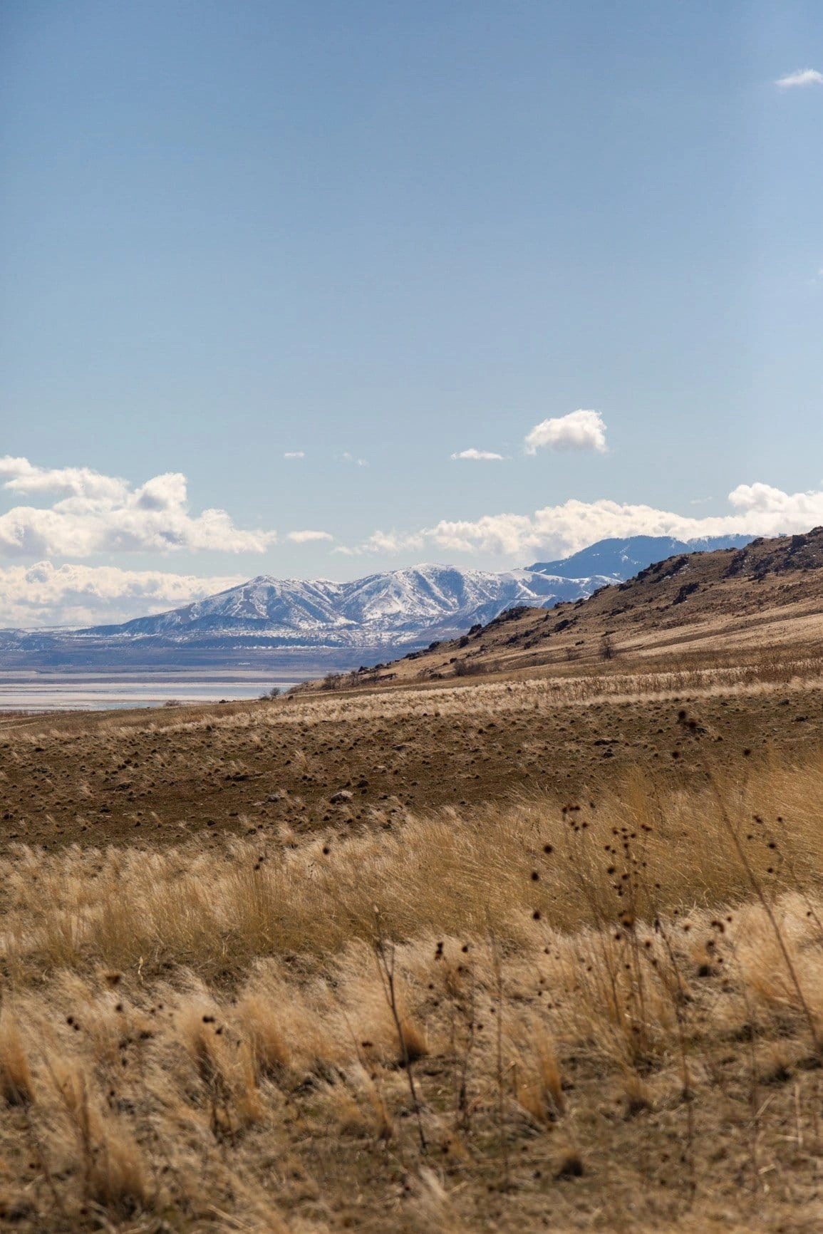 go for a hike for your elopement on antelope island state park in utah