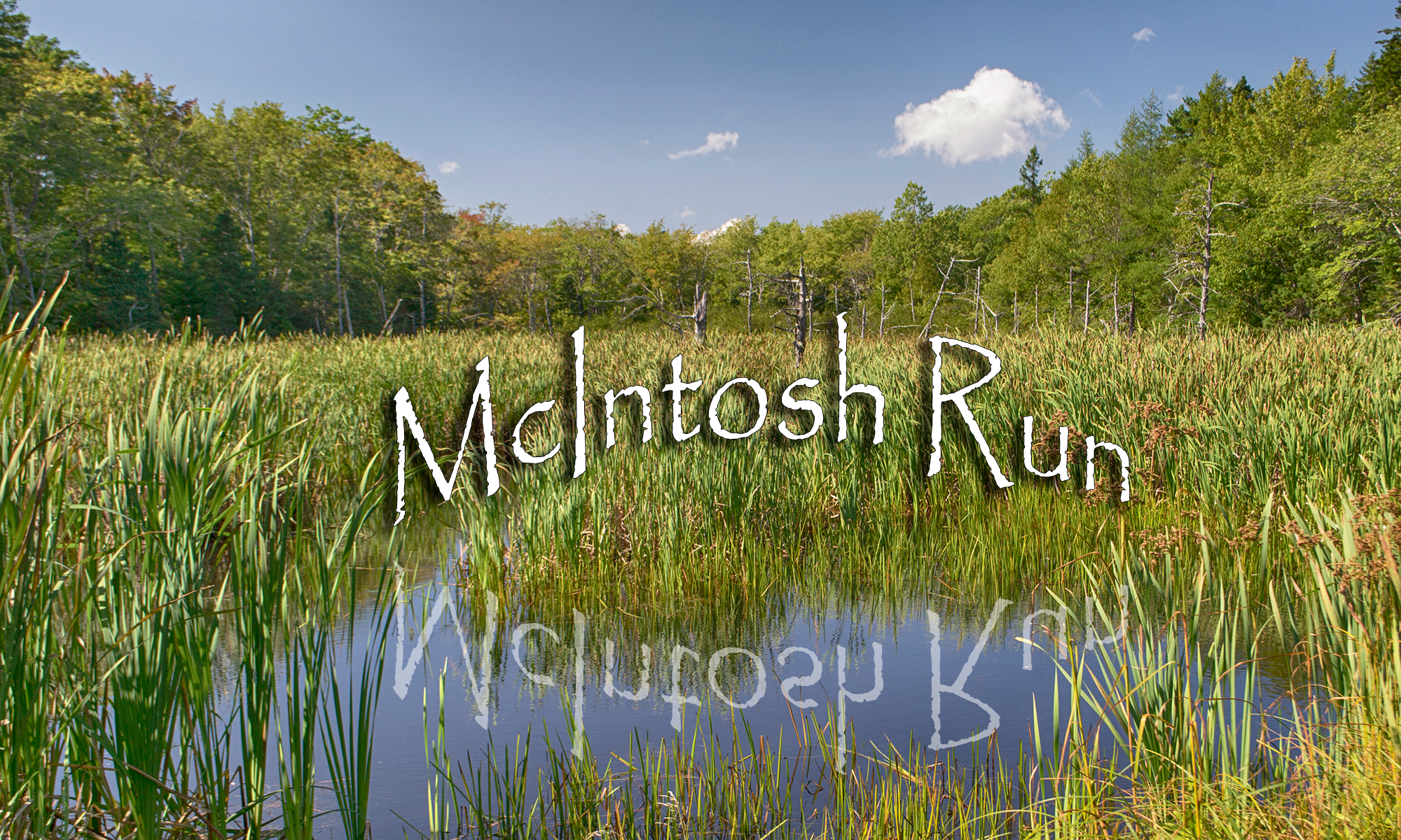 McIntosh Run Community Trail