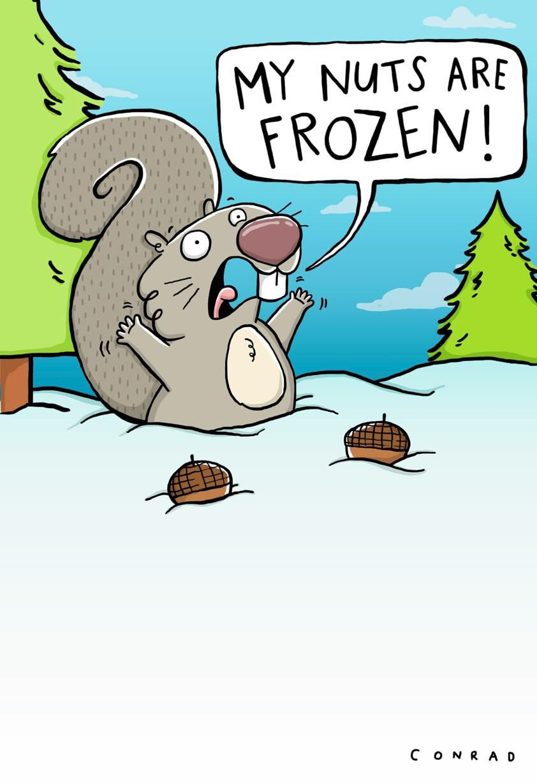 Shoebox Funny Cards Hallmark