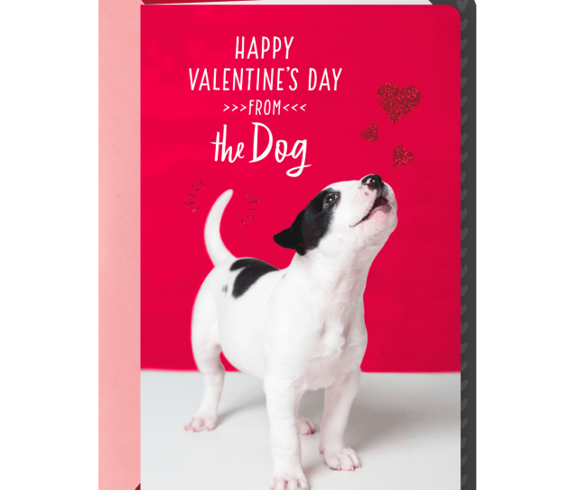 Lucky To Love You Valentines Day Card From Dog