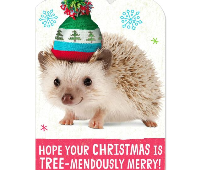 Tree Mendously Merry Hedgehog Christmas Card With Sound