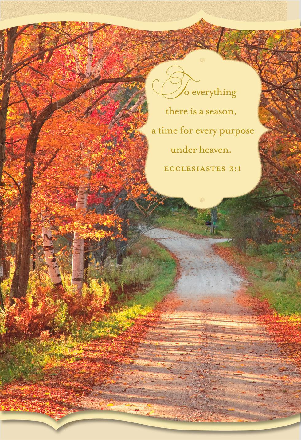 God S Abundant Blessings Religious Thanksgiving Card Greeting Cards Hallmark