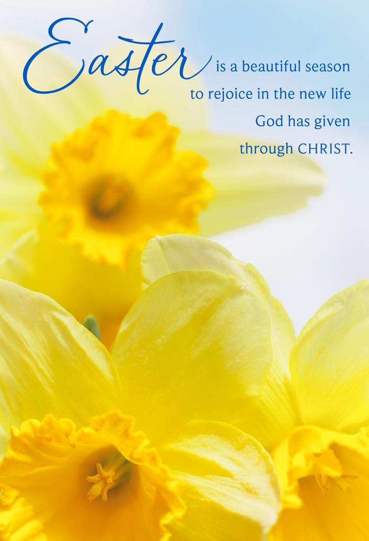 Yellow Daffodils Religious Easter Cards Pack Of 6 Boxed