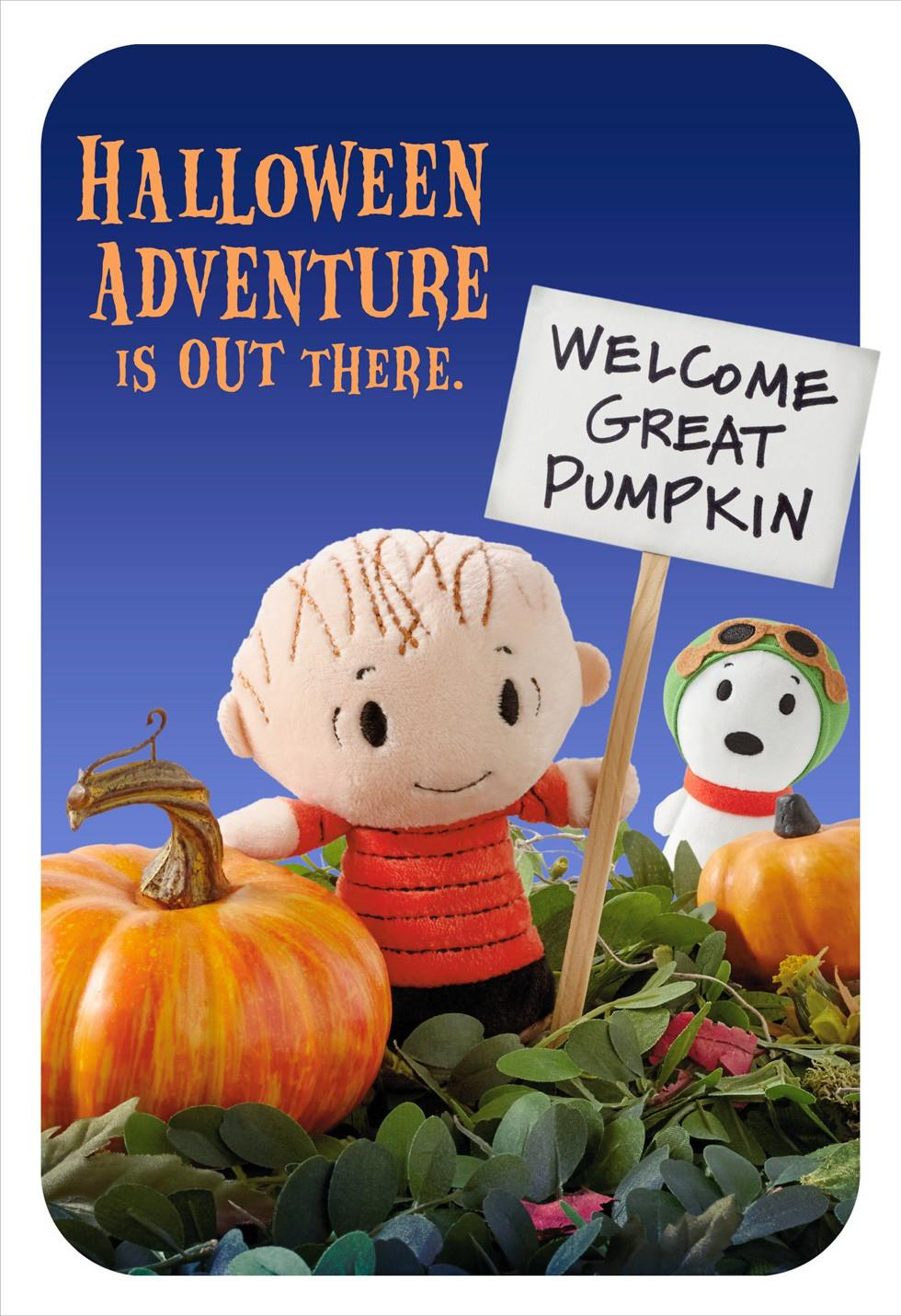 Peanuts Linus And Snoopy Itty Bittys Great Pumpkin