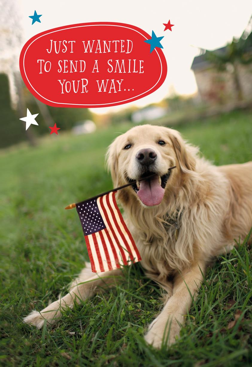 Patriotic Dog Military Thinking Of You Card Greeting