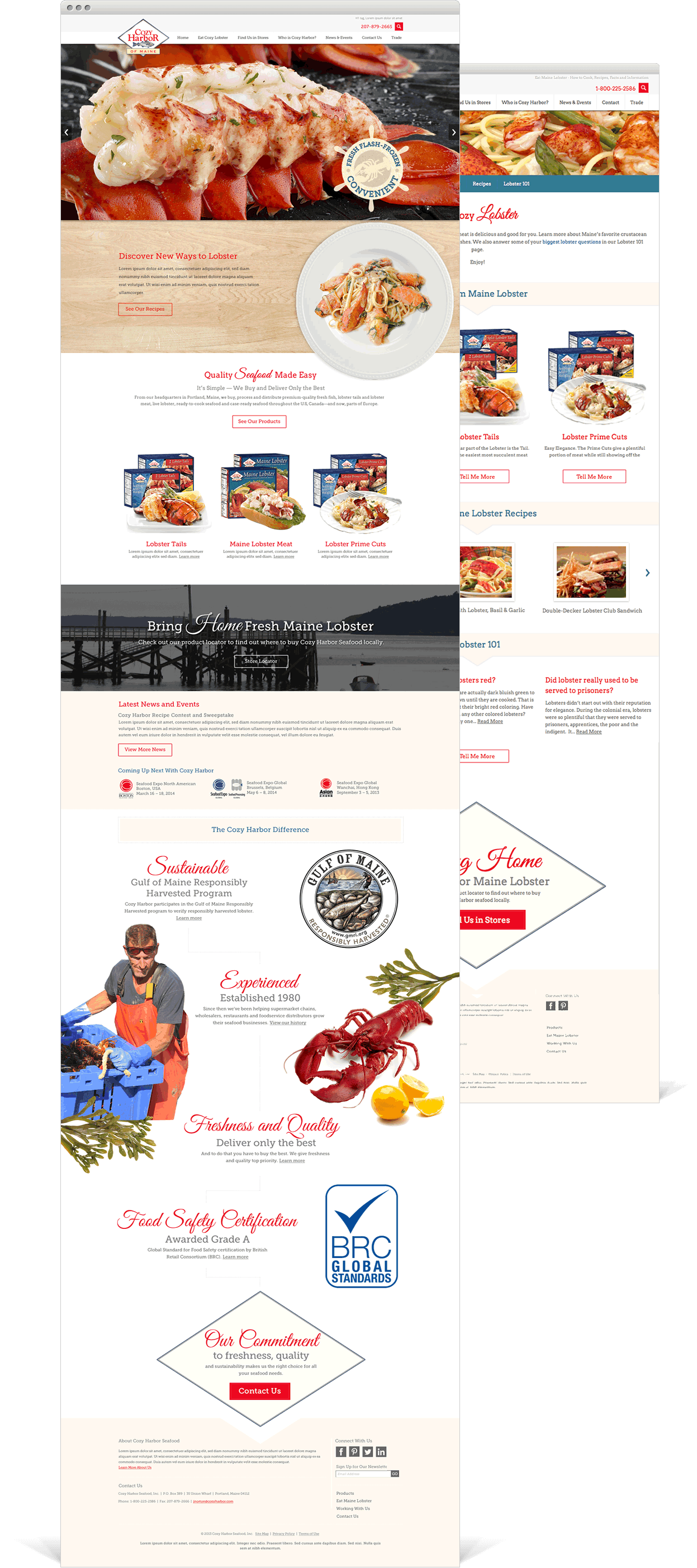 Cozy Harbor Website Layouts