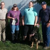Earned her TD (tracking dog title with AKC(