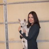 Brie-Pink Female-Canada puppy