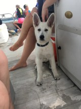 First time on the boat
