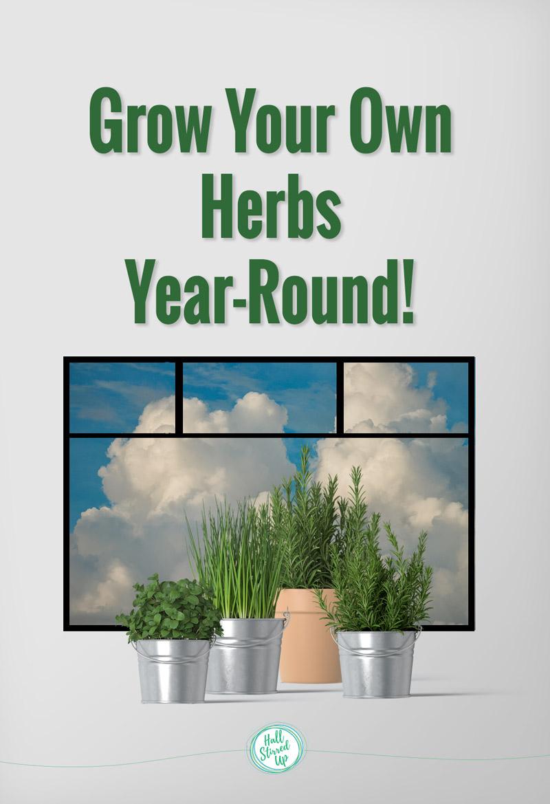 grow-own-herb-garden-year-round
