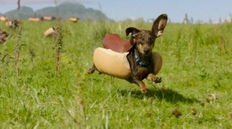 The Hotdog Stampede