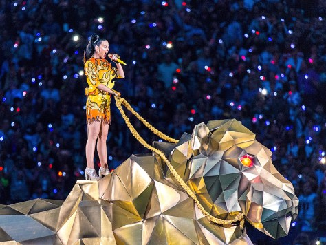 Katy Perry, Super Bowl 49