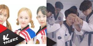 k-tigers-idol-group