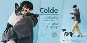 ฮอตอินดี้ | Colde สายเลือดใหม่วงการ K-Indie & Hiphop