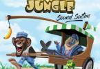 Sound Sultan — Naija Jungle