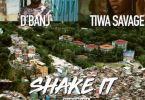 D'Banj Ft. Tiwa Savage – Shake It