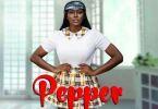 Download MP3: Sefa Ft. Bisa Kdei – Pepper (Prod. Danny Beatz)