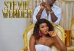 Download MP3: Wendy Shay – Stevie Wonder Ft. Shatta Wale