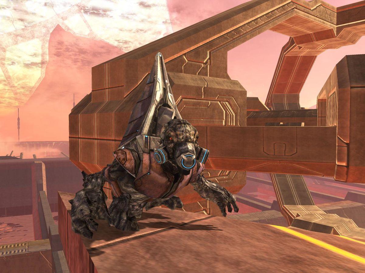 Final Grunt Halopedia The Halo Wiki
