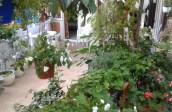 vila dimitris platamon 1