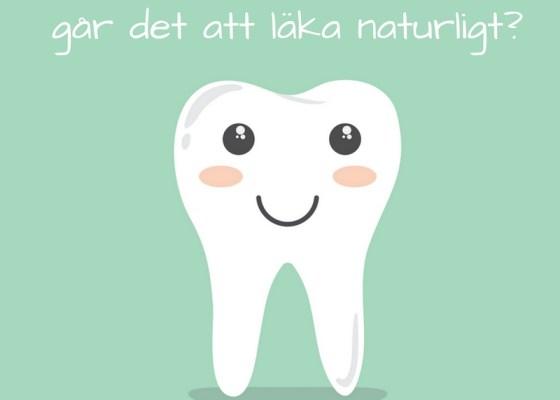 Hål i tänderna, går det att läka naturligt?