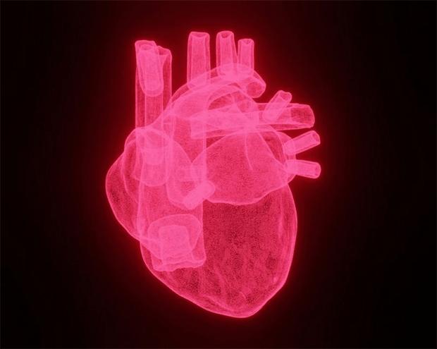 کارڈیک اریسٹ یا حرکت قلب بند ہونے کی وجوہات کیا ہو سکتی ہیں؟ 1