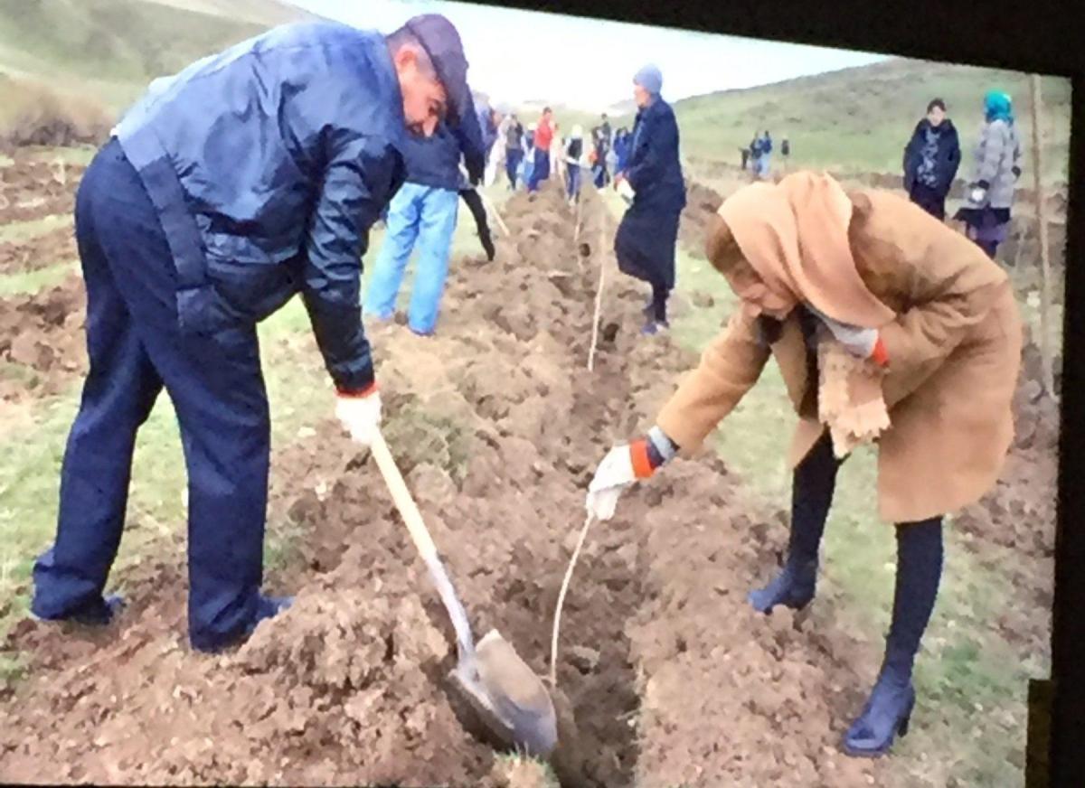 Hamazkayin's Artee Committee Hosts Armenia Tree Project