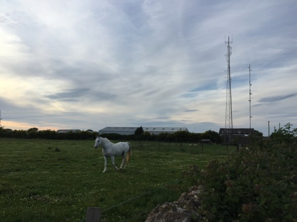 Horse & Transmitter Site near Parking Spot