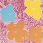 Flowers, [II.70], 1970