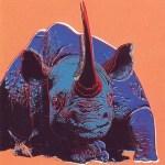 Black Rhinoceros, [II.301], 1983