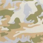 Camouflage, [II.407], 1987