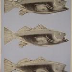 Triple Fish, [IIIA.41], 1983