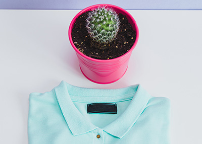 But then again, can you ever truly KNOW that you won't need your potted cactus?