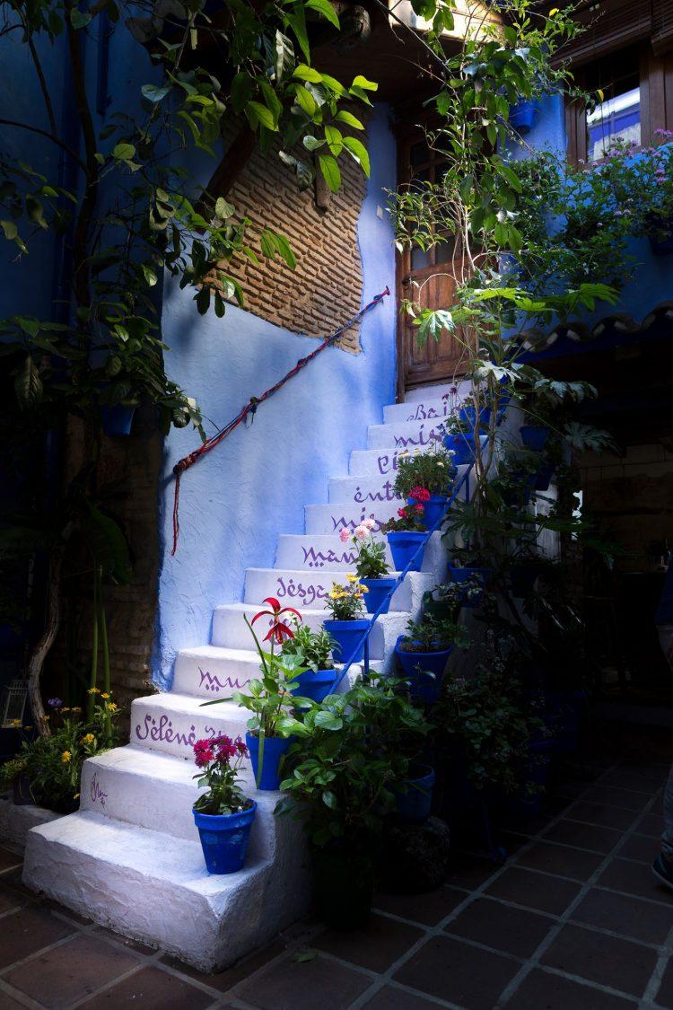 El color y la alegría de los patios de Córdoba