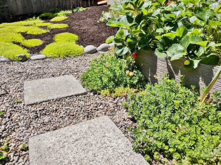 Spruce up your raised garden beds with a river rock border and a paver stone path surrounded by low-maintenance ground cover and mulch